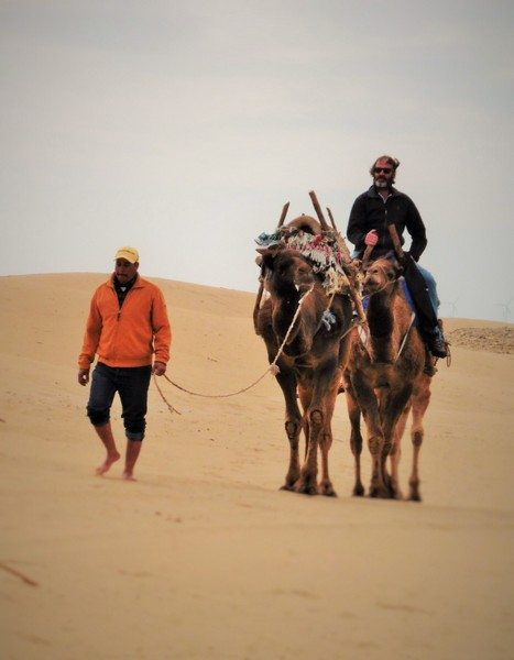 Hump Day Morocco Style
