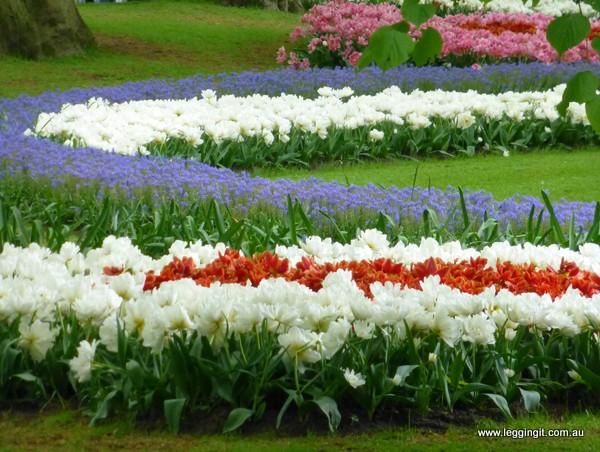 Tulips Keukenhof Gardens