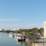 Why You Should Avoid The Green Bus Tour Seville