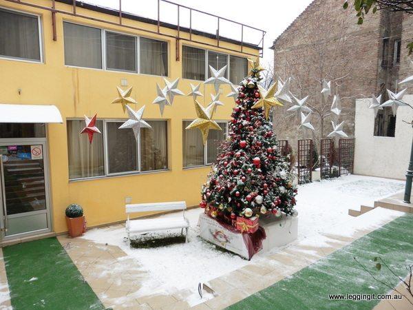 Garden 40 Belgrade