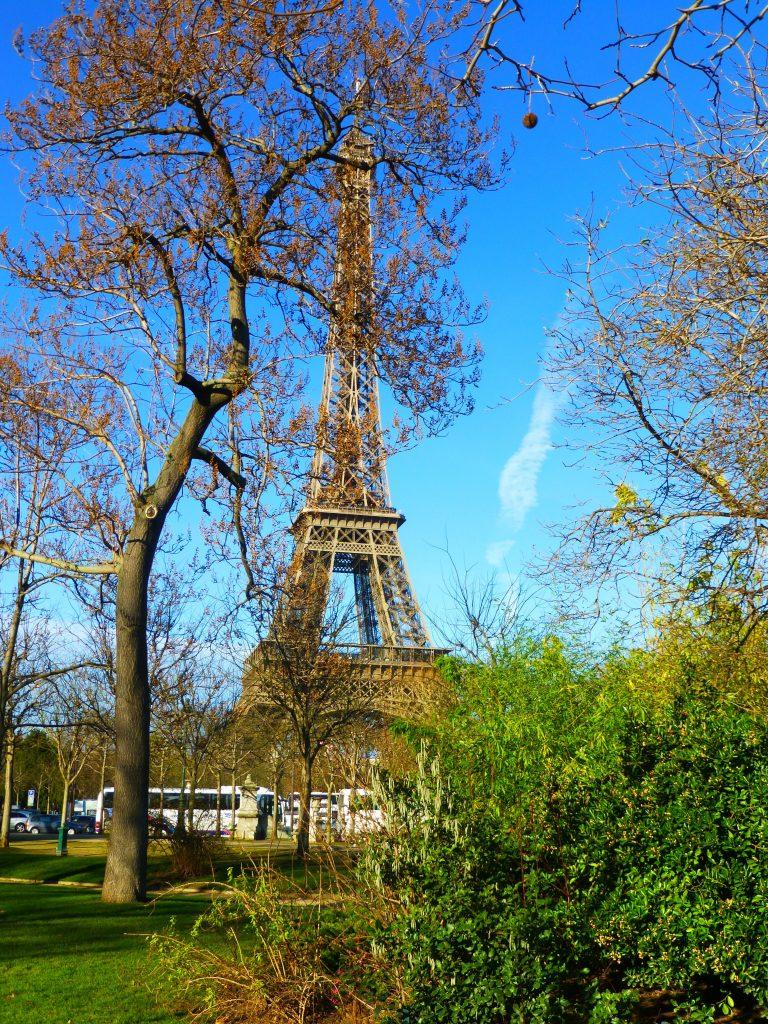 Amazing Book Discoveries-Paris France