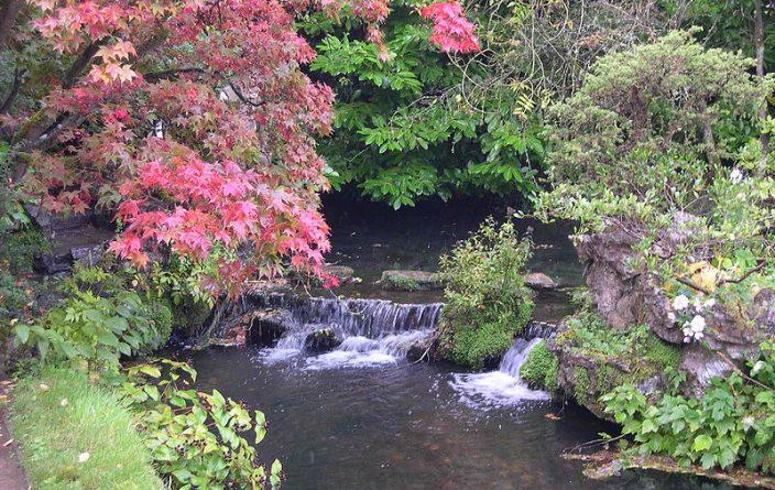 Japanese Gardens Irish Stud and Gardens Ireland